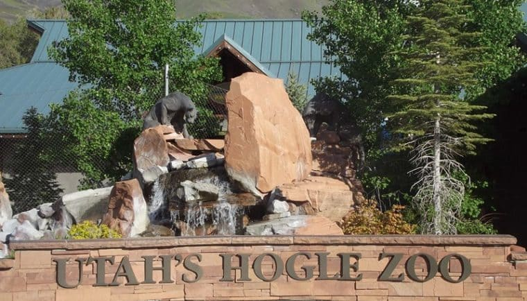 hogle zoo, zoo, salt lake city, utah, park, mountains, travel, tourist, animals, cats, apes, scenic