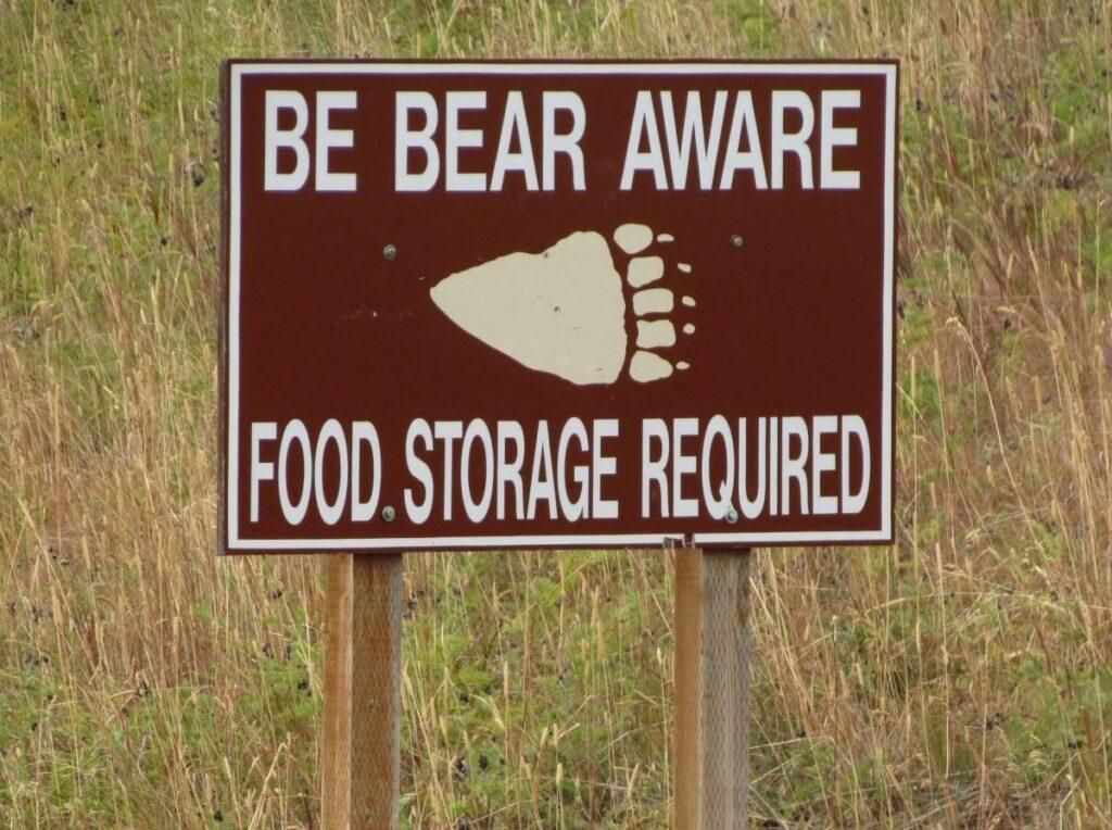 Yellowstone National Park, nature, wildlife, Wyoming