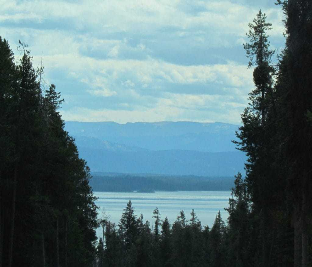Th Grand Teton Mountain Range appears between pine tree lined sides of the highway leading south our of Yellowstone National Park.