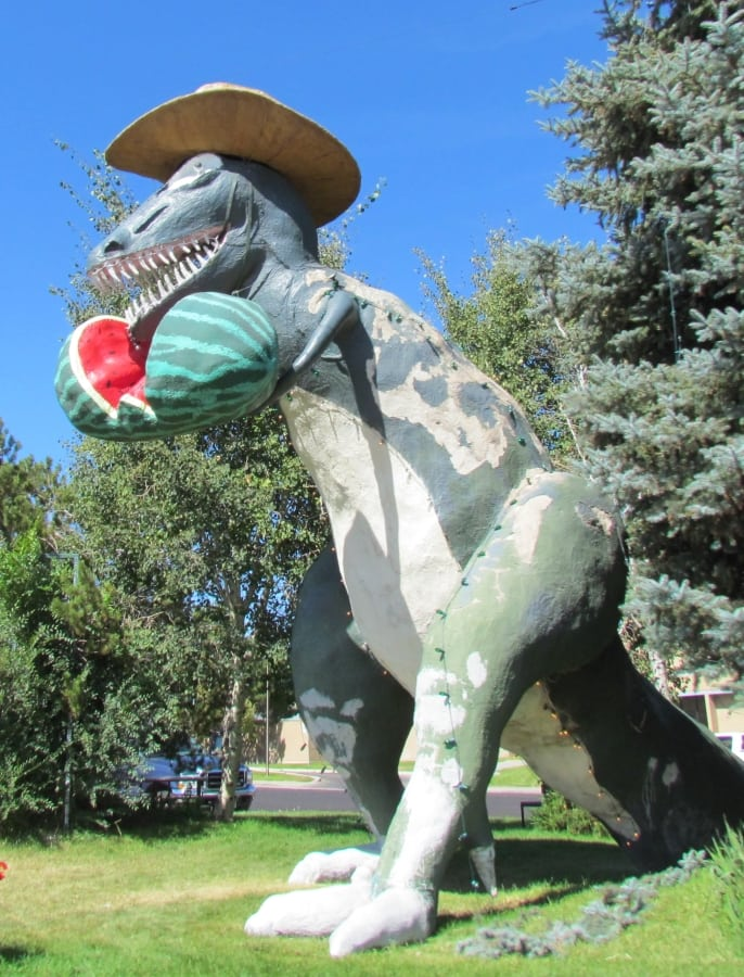 An oversized comical dinosaur statue is found in Colorado. The dinosaur is wearing a cowboy hat and eating a watermelon.