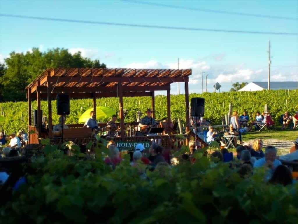 Holyfield Winery - vineyard - Guitar Elation - blogger - wine - pizza - Prairie Fire