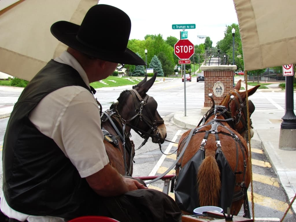 trail ride - Missouri mules - wagon ride - Independence Missouri - Harry Truman