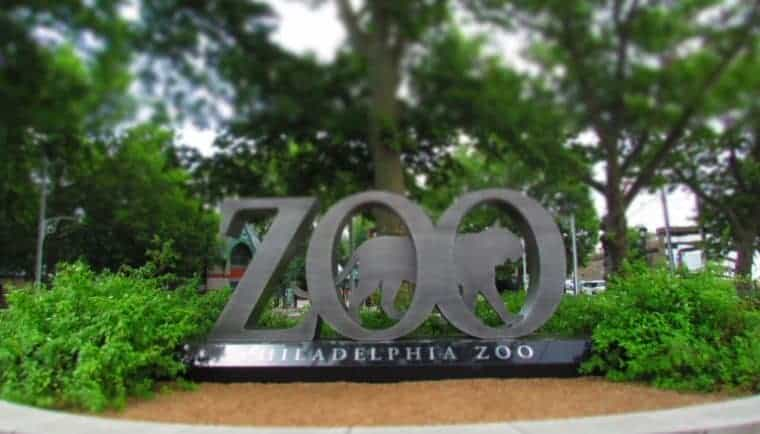 Philadelphia Zoo-animals-360 degrees-overhead trails-zoos-wildlife-endangered species-Philadelphia