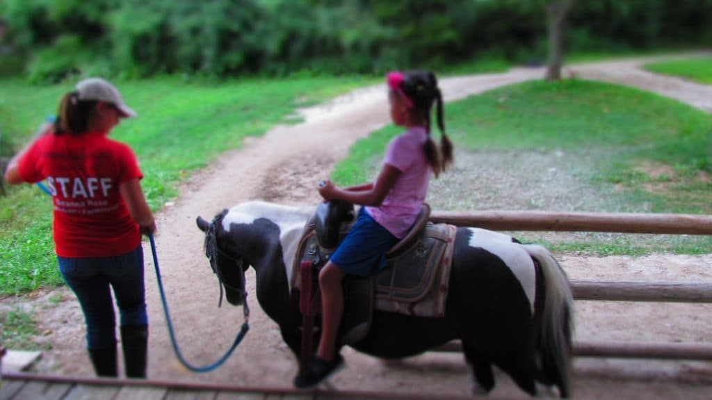 Granddaughter on a pony ride.