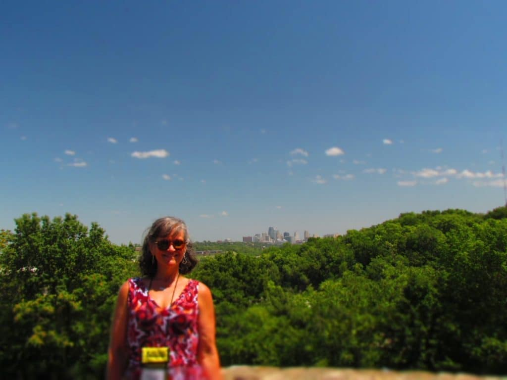 Author at Rosedale Arch.