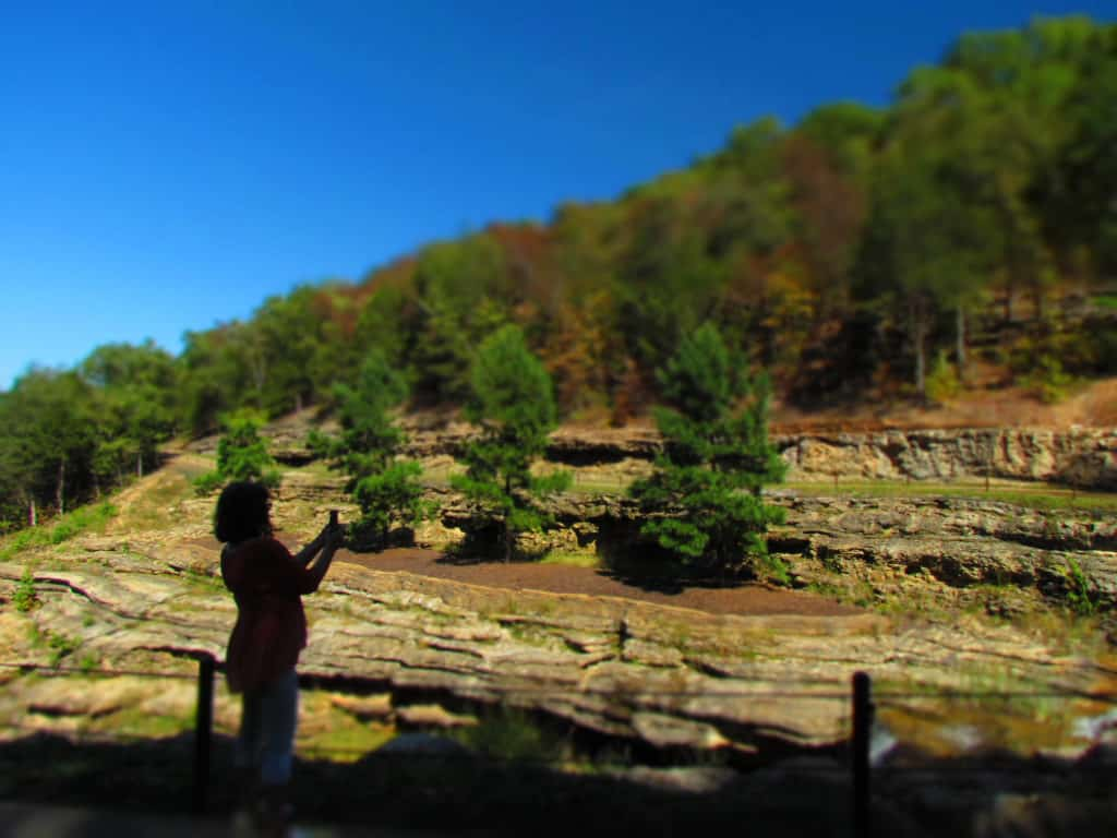 Crystal takes a picture of the landscape.