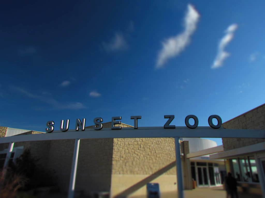 The Sunset Zoo is a small park in Manhattan, Kansas that offers visitors a chance to see a few animals.
