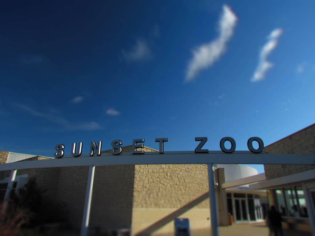 Sunset Zoo-Manhattan Kansas-zoo-park-animals-winter-sunshine