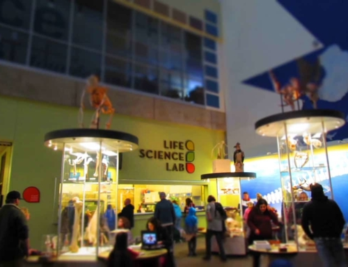 How The St. Louis Science Center Brings Science To The Masses