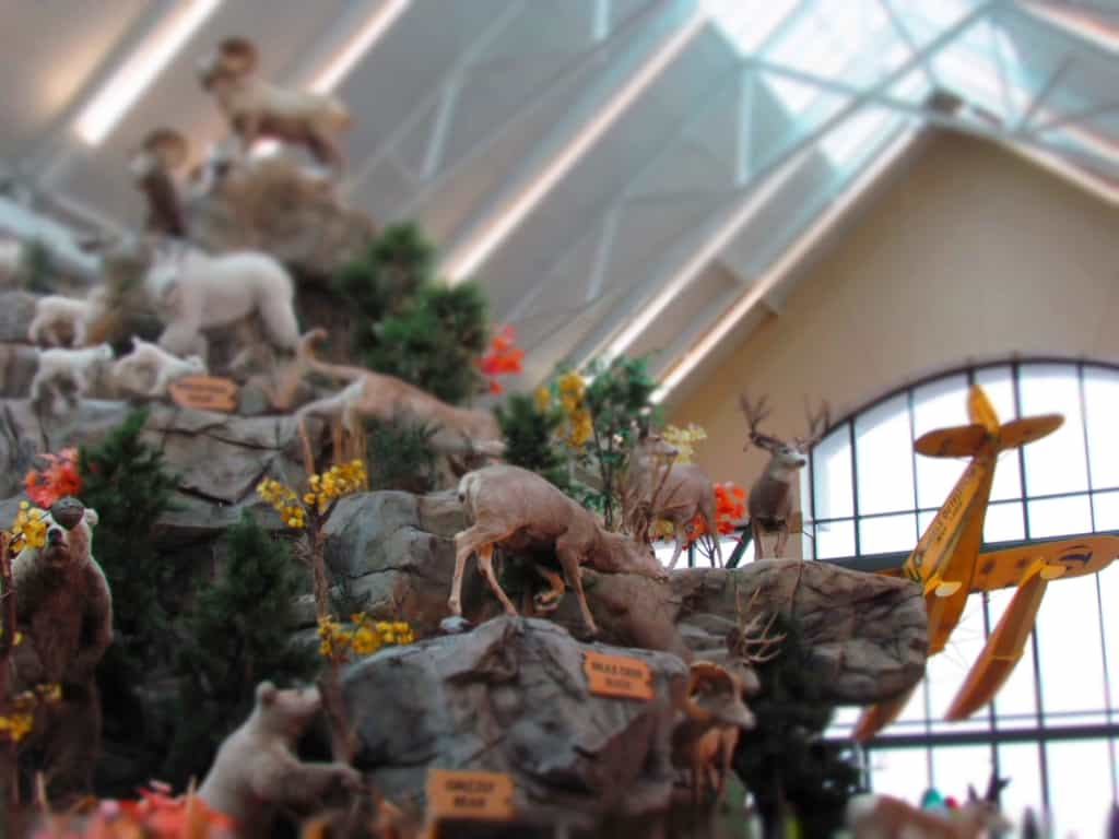 An artificial mountain is home to a variety of animal species in Scheels.