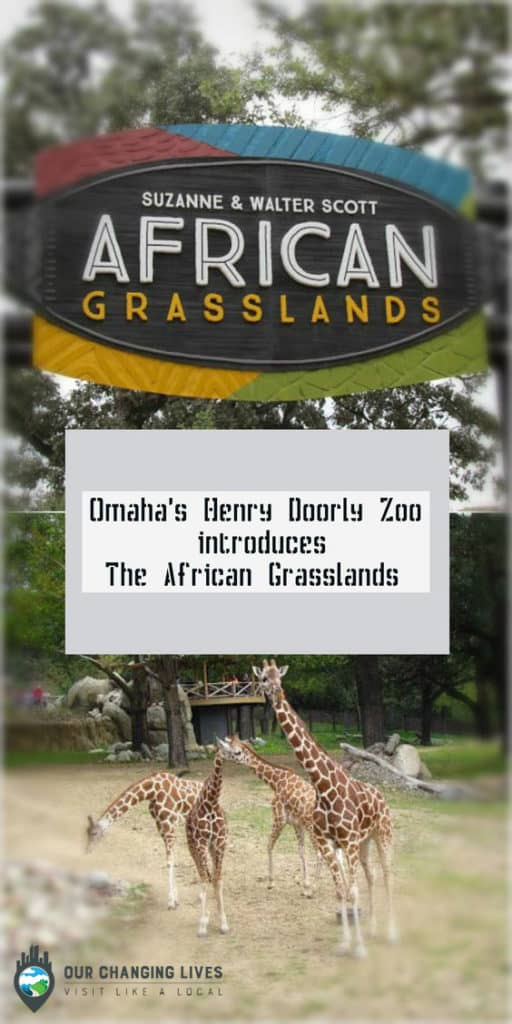 Omaha-Zoo-Henry-Doorly-animals-adventure-Nebraska