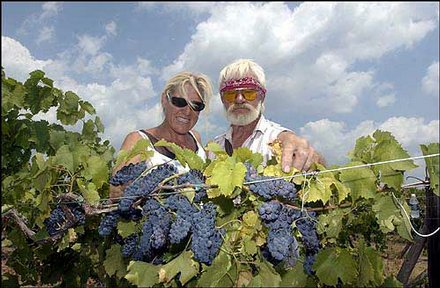 Holyfield Winery