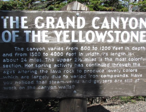 Yellowstone National Park – Rocky Mountain Trip Part 2