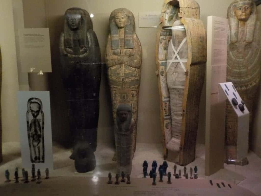 Field Museum - Chicago museums - Chicago attractions - Midwest travel - Science museums