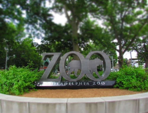 360 Degrees of Animals at Philadelphia Zoo
