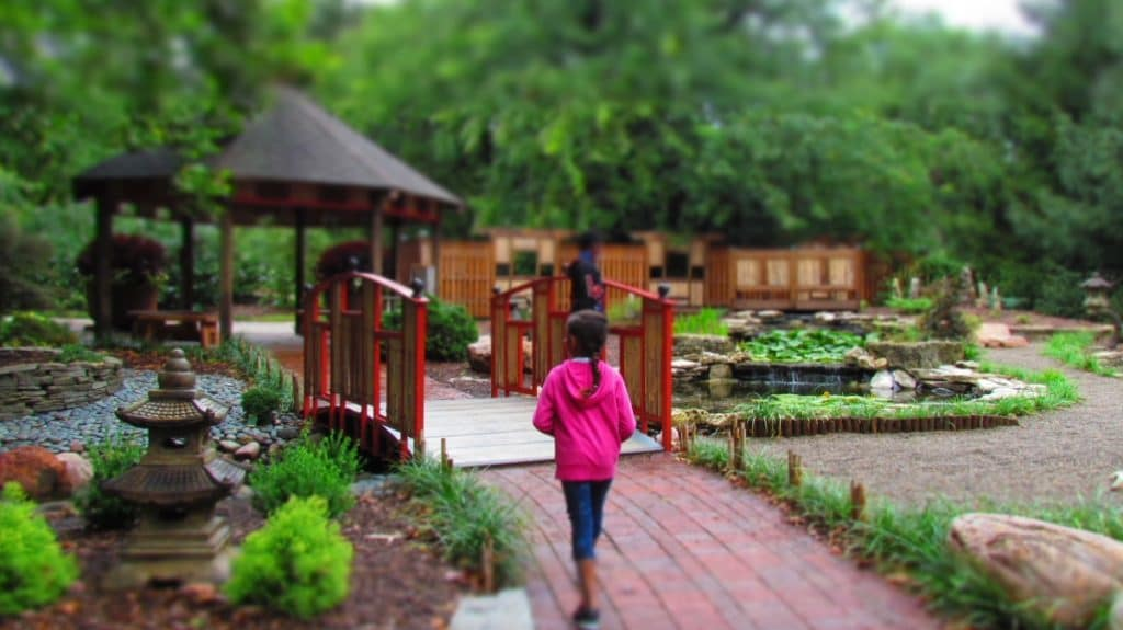 The Asian gardens are a serene place to relax and enjoy the sights.