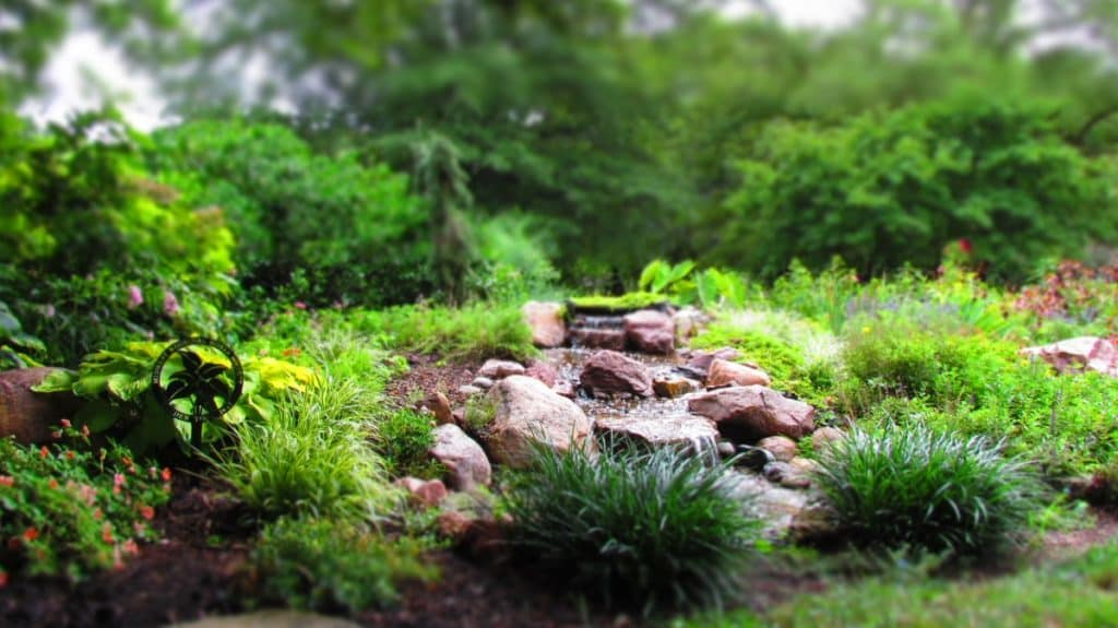 A calming water feature greets guests at Ward Meade Botanical Gardens,