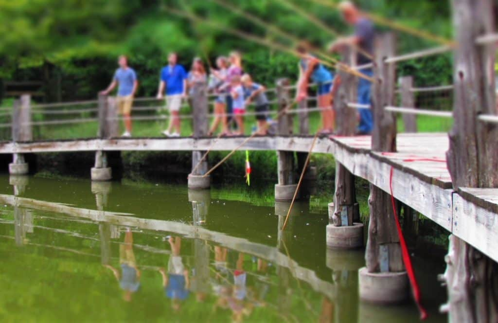 Visitors fishing at Deanna Rose Farmstead.