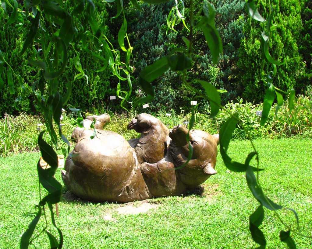 Powell-Gardens-Kingsville-Missouri-botanical-flowers-plants=gardens
