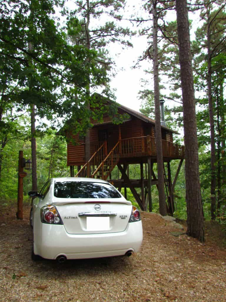 The Treehouse Cottages are cabins elevated above the forest floor.