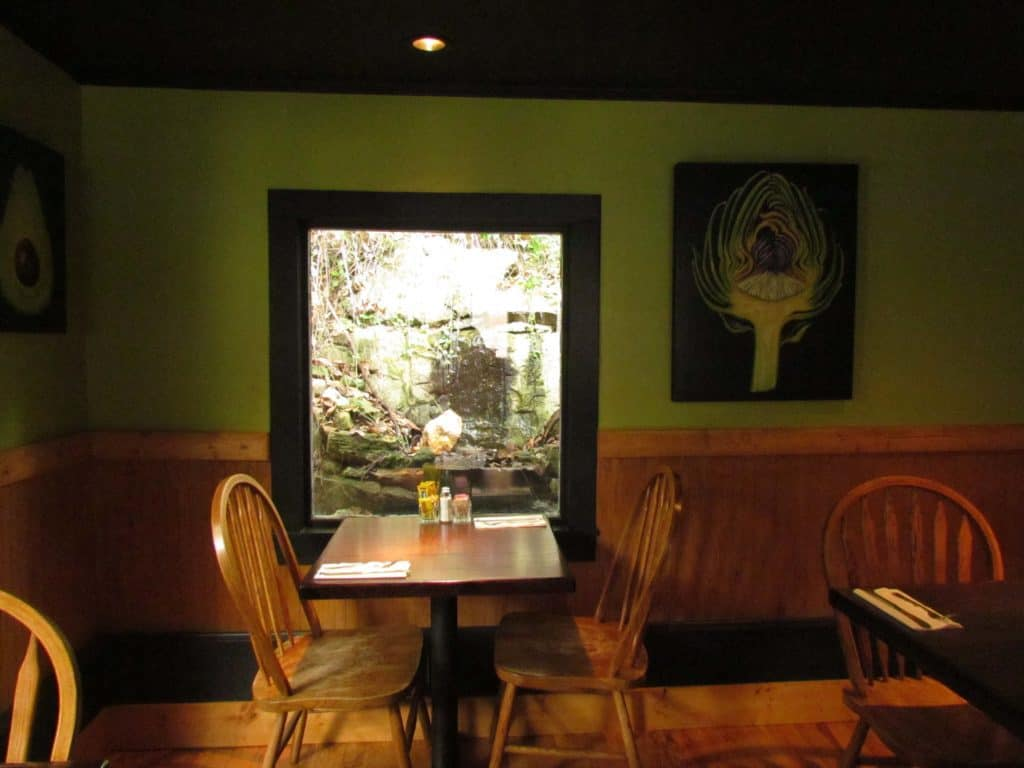 The interior of the Local Flavor cafe features views of a natural spring.