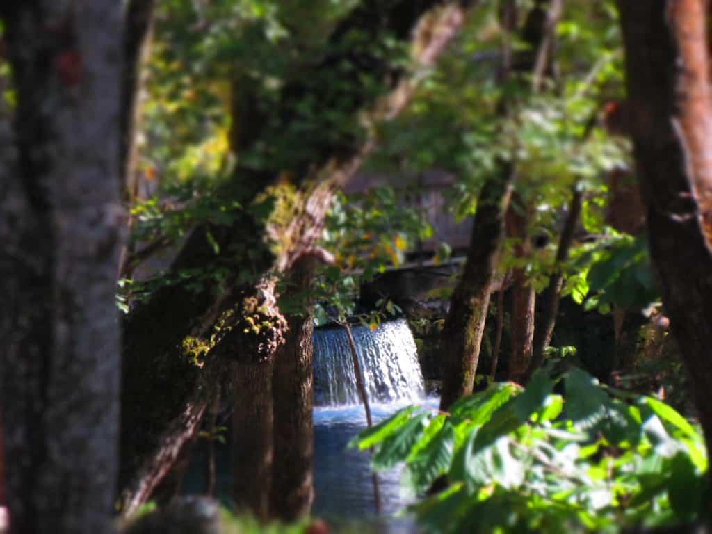 Blue Spring Heritage Center-Eureka Springs-Arkansas-Trail of Tears-natural spring
