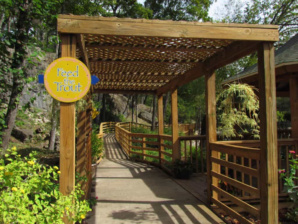 A well maintained pathway leads around the site, and offers access to a trout feeding station.
