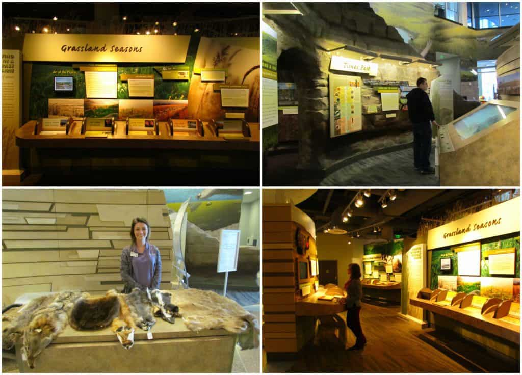 The displays are made to be interactive and draw visitors to engage.