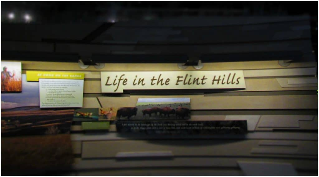The Flint Hills Discovery Center is a great place to get a better understanding of the ecosystem of the region.