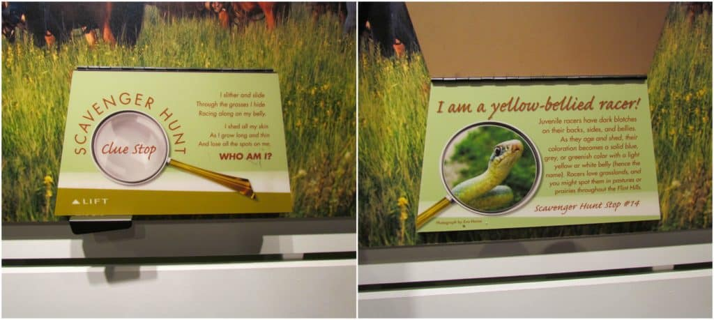 Scavenger hunt placards are scattered around the center and offer educational information to visitors.