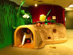 The authors explore an oversized insect tunnel.