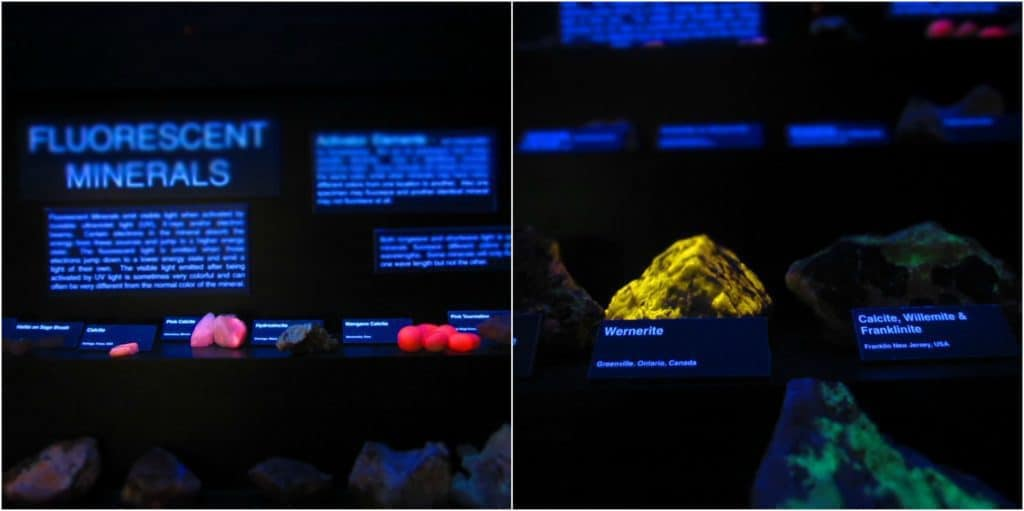 A display of fluorescent minerals is a favorite of visitors to the museum.