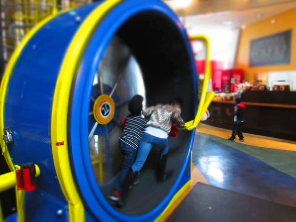An oversize hamster wheel is popular with kids.