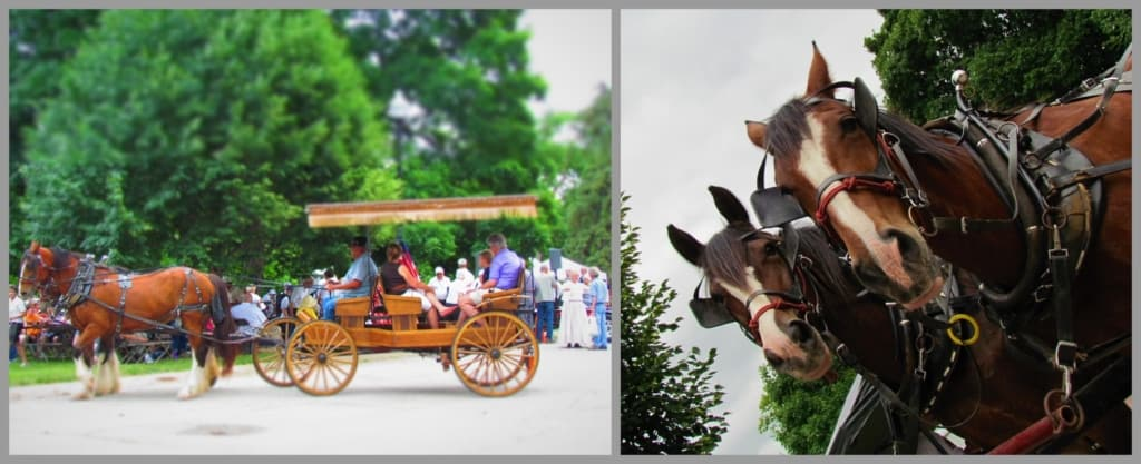 Wagon rides are available for visitors to the Strawberry festival.