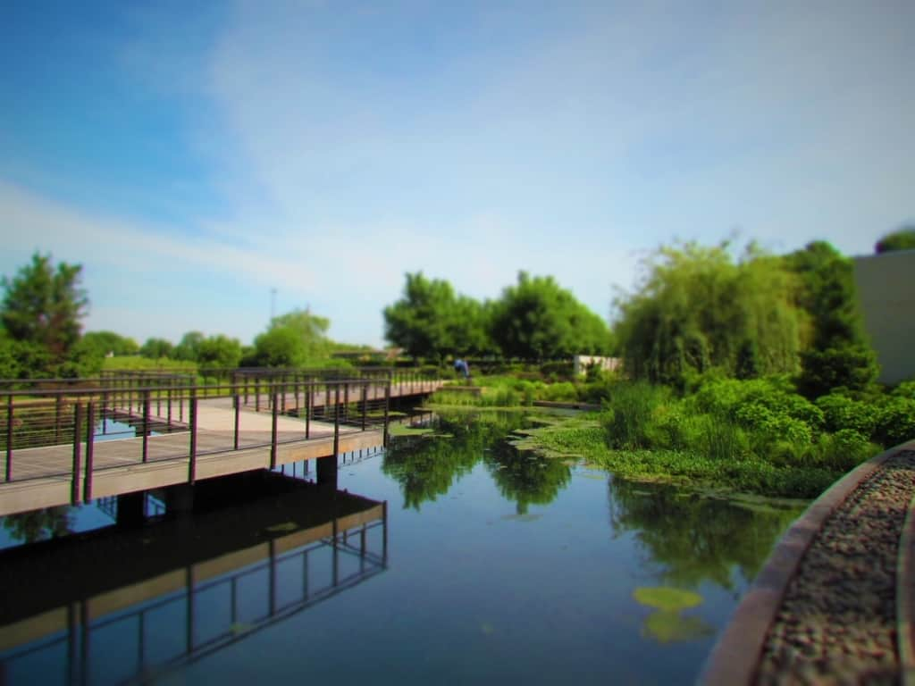 The water garden is a tranquil setting to enjoy the reflections of nearby landscaping.