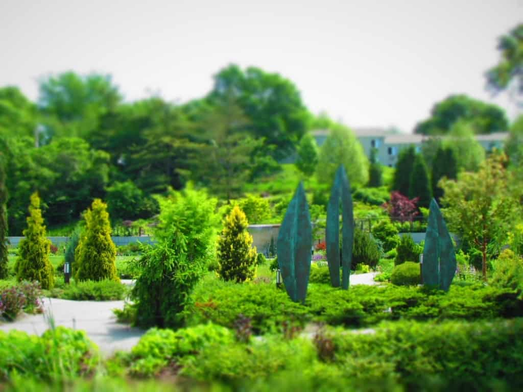 A conifer garden in the Des Moines Botanical Gardens offers lots of variations of textures and colors.