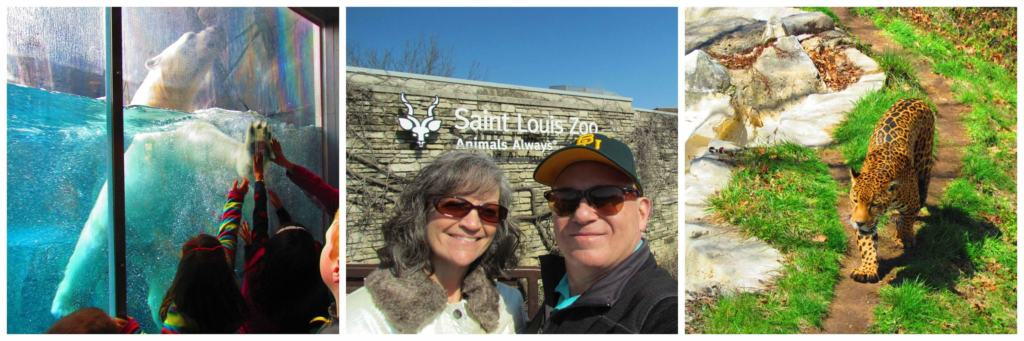 There is plenty to see at the St. Louis Zoo, which is the top free attraction in America.