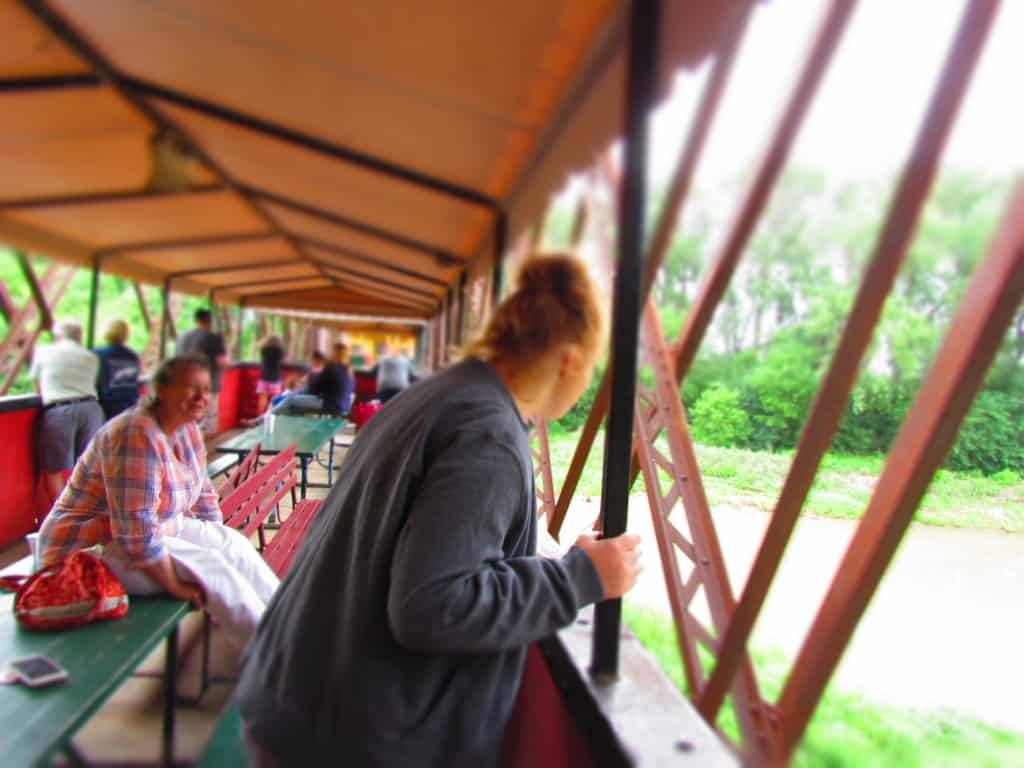 Riders on the train excursion investigate the surroundings as they head down the tracks.