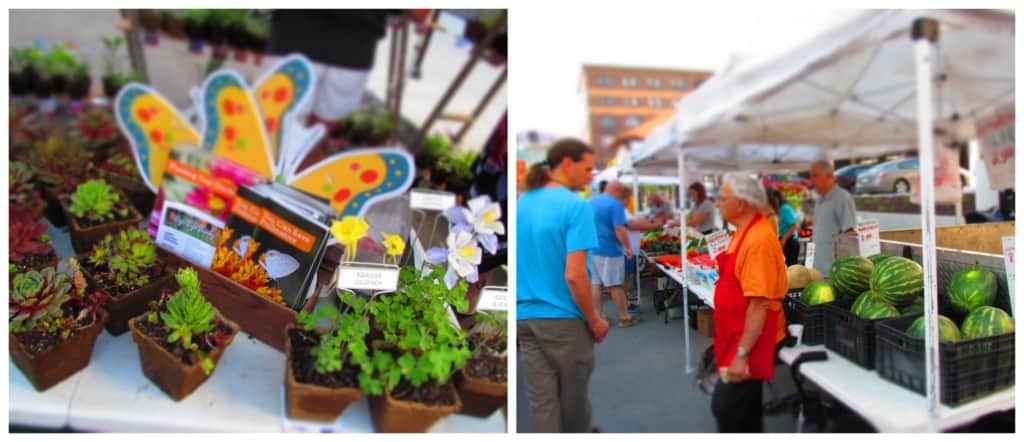 Fresh produce and flowers can be found at the farmers market.