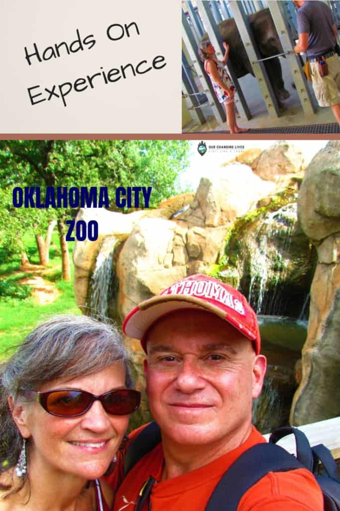 Oklahoma City Zoo-hands on-elephants-visitors experience-nature-animals-zoo animals-habitats