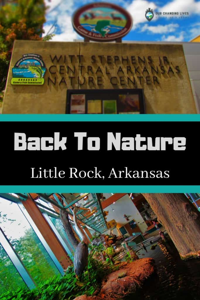 Central Arkansas Nature Center-animals- nature-ecosystems-fishing