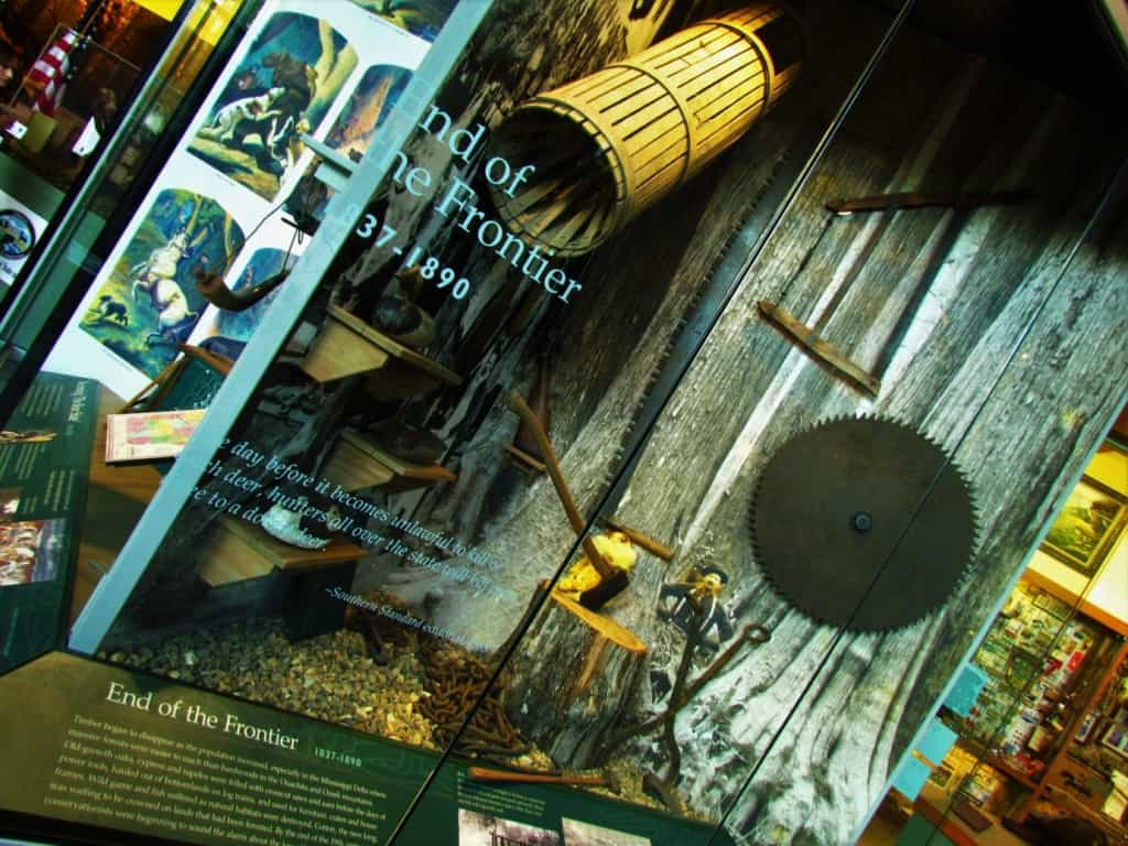 Various displays offer a historic lesson about wildlife in Arkansas.