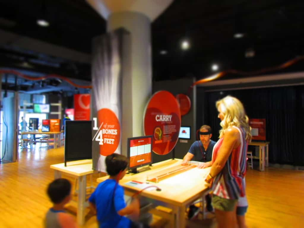 Two museum guests compete to see who can better control their brain activity.