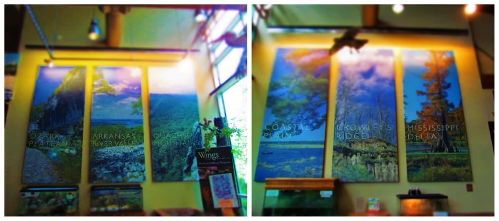 The six distinct regions of Arkansas are highlighted in the Central Arkansas Nature Center.