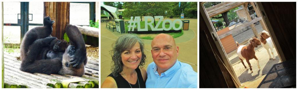 At the Little Rock Zoo we saw the baby gorilla cuddling with her mother.