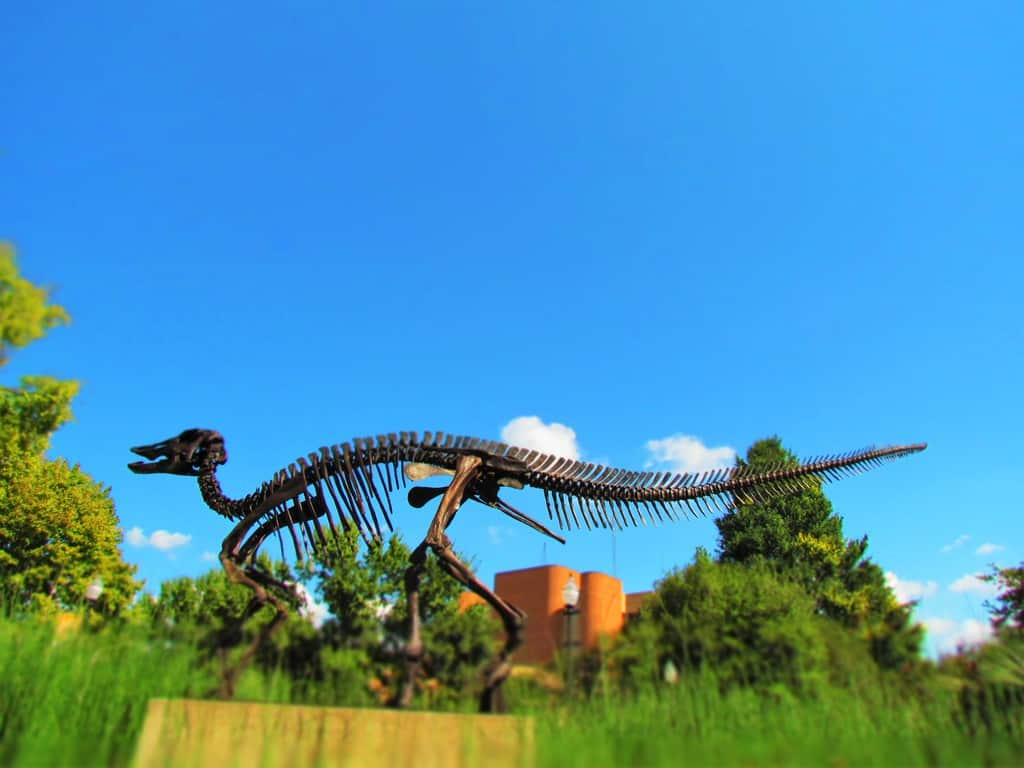"""Monty"" the duck-billed dinosaur marks the entrance to the McClung Museum of Natural History."