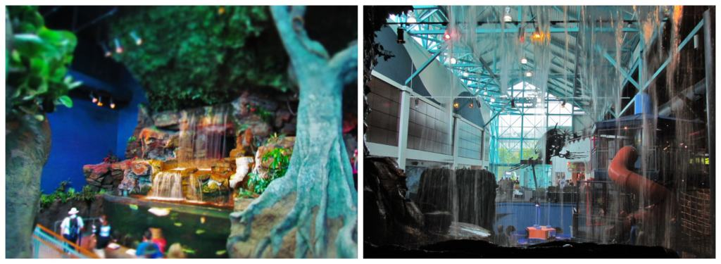 The interior of the Ripley's Aquarium of the Smokies is a picturesque setting for a leisurely visit.