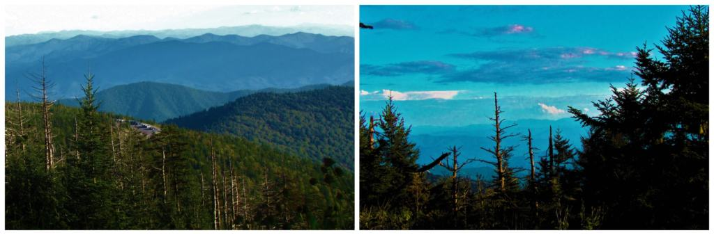 As we were climbing Clingmans Dome, we noticed the parking lot slowly fade into the distance.