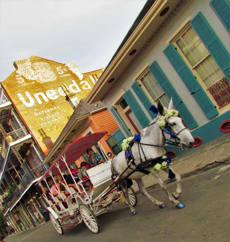 The French Quarter is a fun place to enjoy a carriage ride in a colorful wagon.