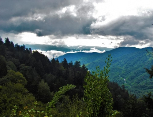 Blue Ridge Parkway – The Road To The Top